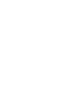 Big Bang Web